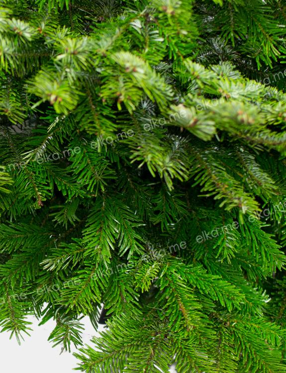 Датская елка