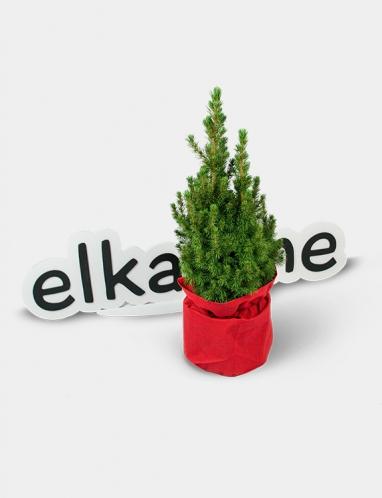 Маленькая подарочная елка